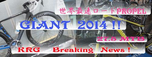 2013_9_4_2014-GIANT-faster-banner