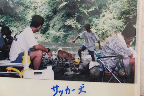 2014_2_20_1998_7_camp3