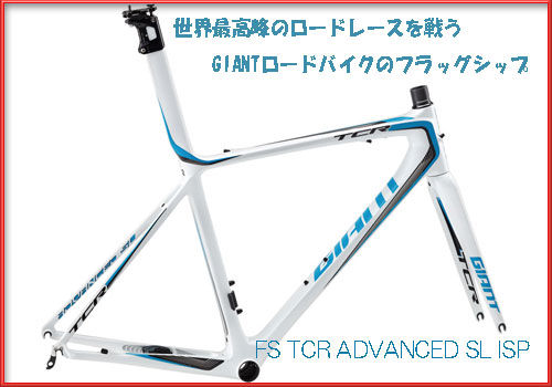 giant-tcr-ad-sl
